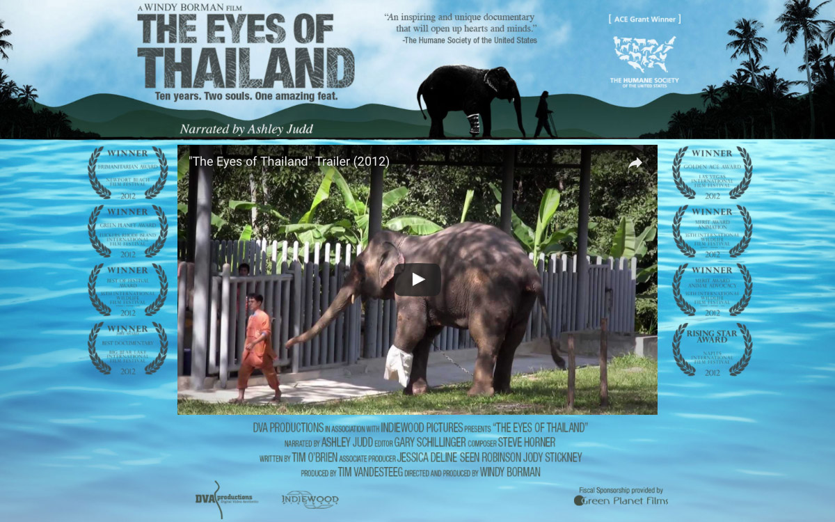 eyes of thailand homepage
